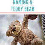 Stuffed Teddy Bear Names