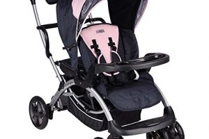 The 5 Best Sit and Stand Strollers for Infants and Toddlers - Katherine Rosman
