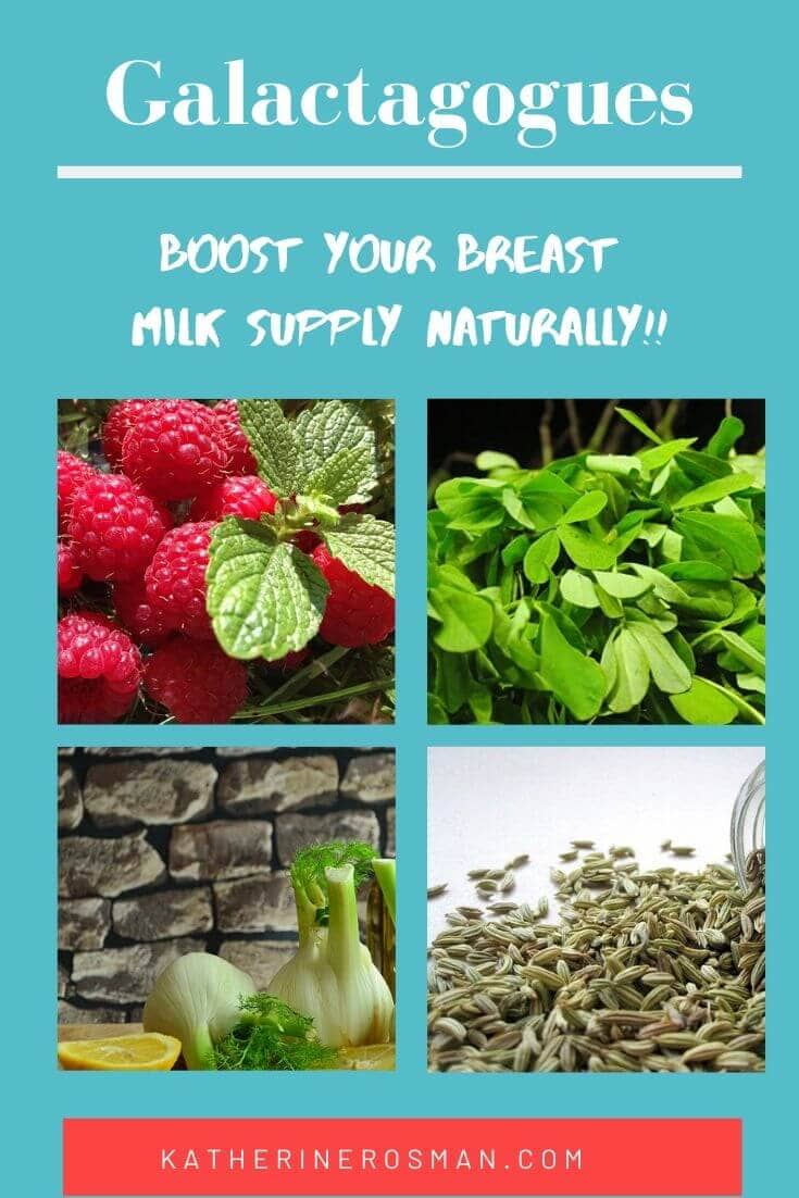 galactagogue herbs to increase milk supply