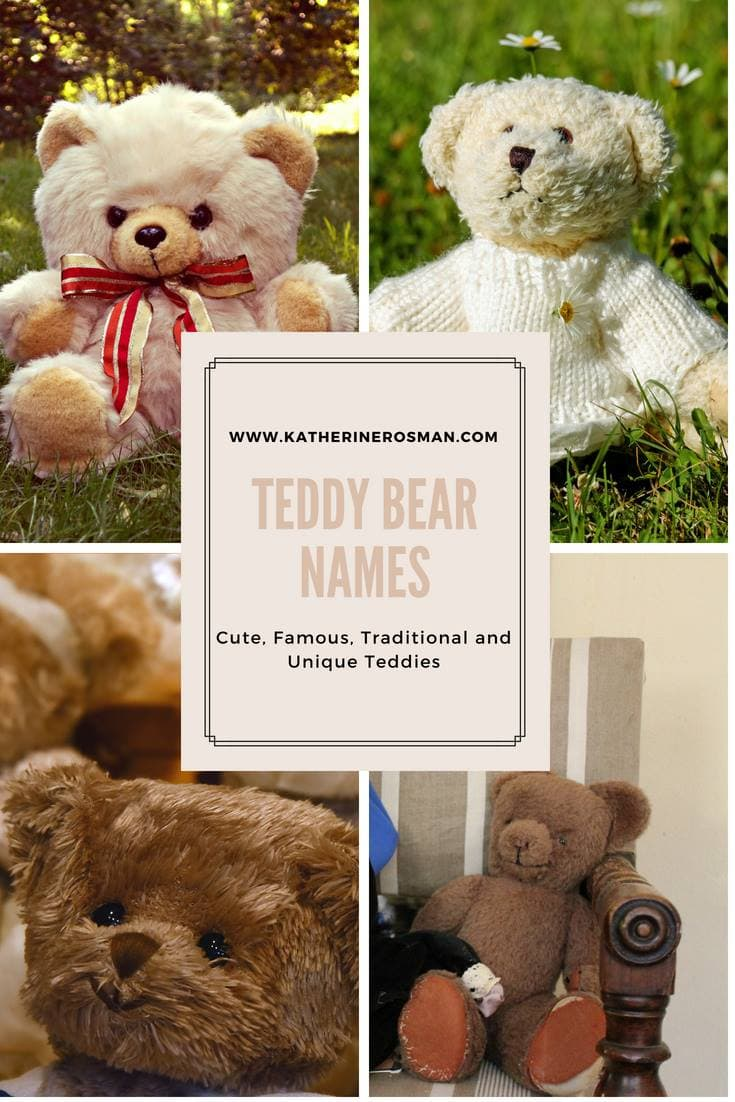 teddy bear names